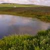Za 5134 seasonal pond in Tinie Versveld