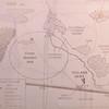 Za 5089 Tinie Versveld wildflower reserve