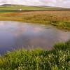 Za 5133 seasonal pond in Tinie Versveld