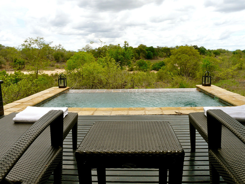 plunge pool at the Lion Sands in South Africa