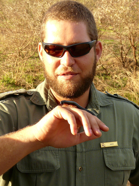Safari ranger holding a bug as he gives a lecture.