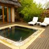 plunge-pool-madikwe