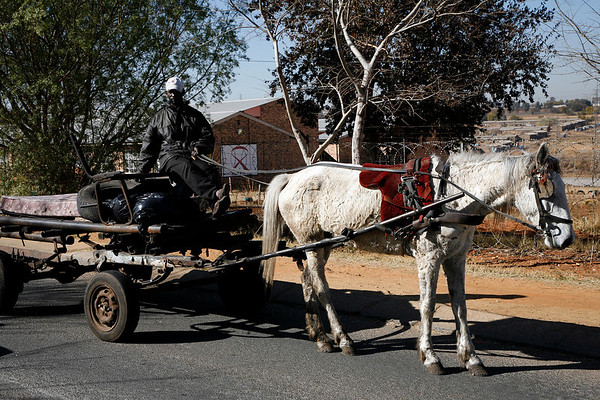 This cart was on the road with the large homes just out of camera, the border between rich and poor.