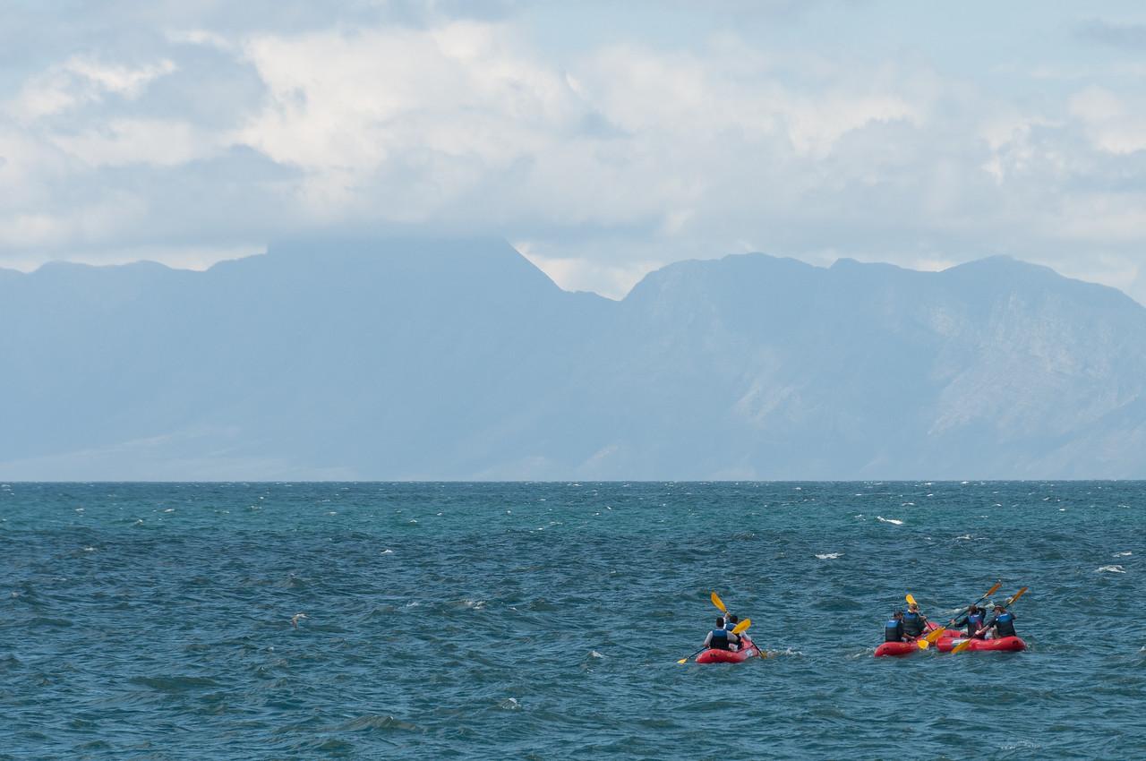 Kayaking at Boulders Beach, South Africa