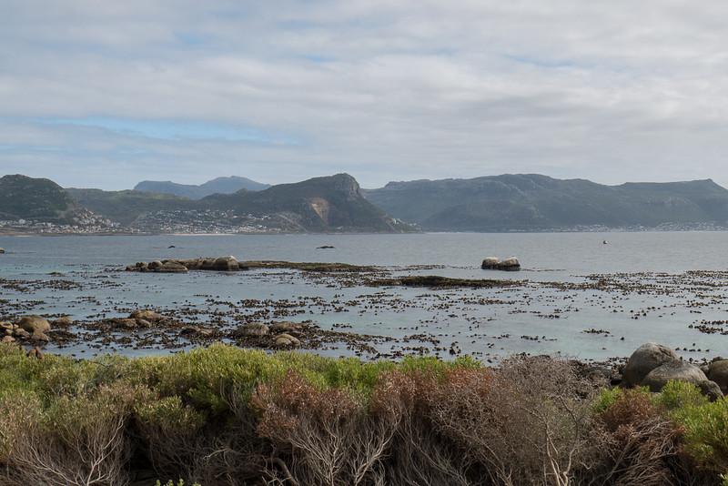 Cape Peninsula, South Africa