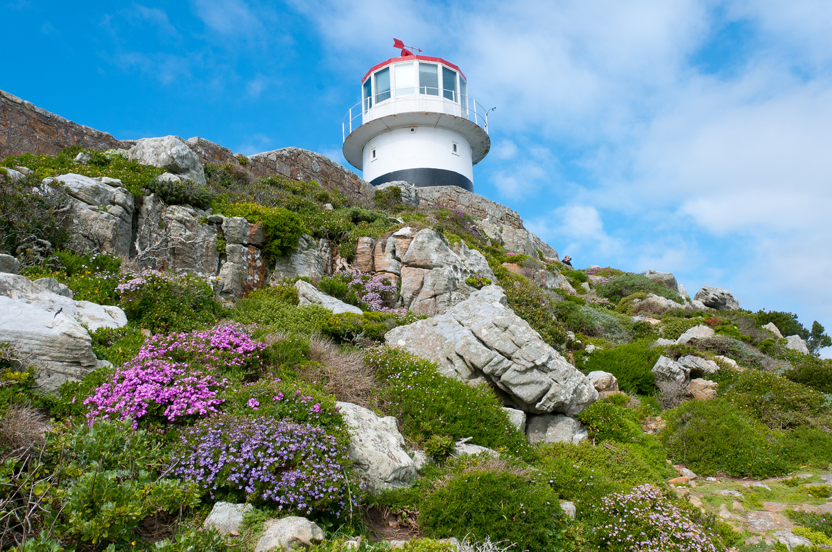 UNESCO World Heritage SIte #125: Cape Floral Region Protected Areas