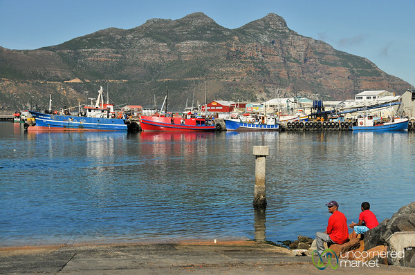 Hout Bay Harbor - Cape Town, South Africa