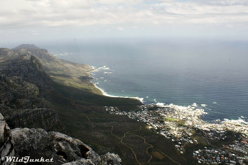 View of Twelve Apostles stretching towards Cape Point