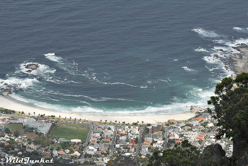 A closeup photo of Camp's Bay