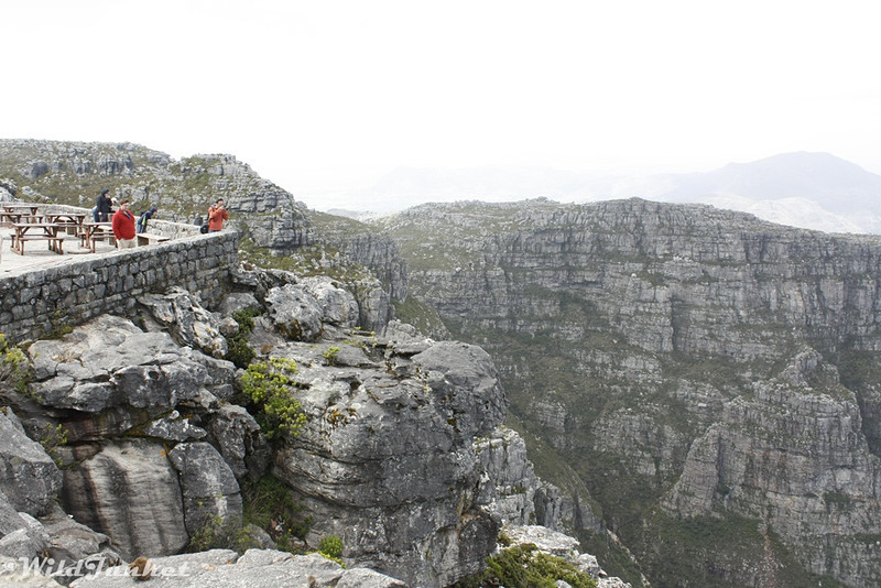 Viewing point from top of Table Mountain