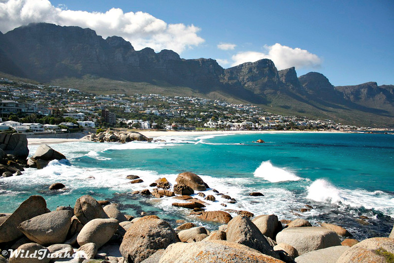 The Perfect 2-Week South Africa Itinerary – Wild Junket Adventure Travel Blog