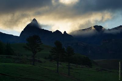 Drakensburg Garden