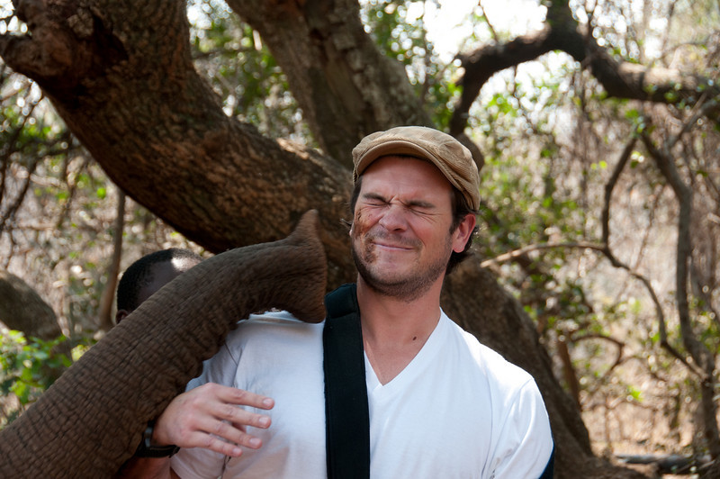 Interacting with elephant at the Hartbeespoort Dam Elephant Sanctuary, South Africa