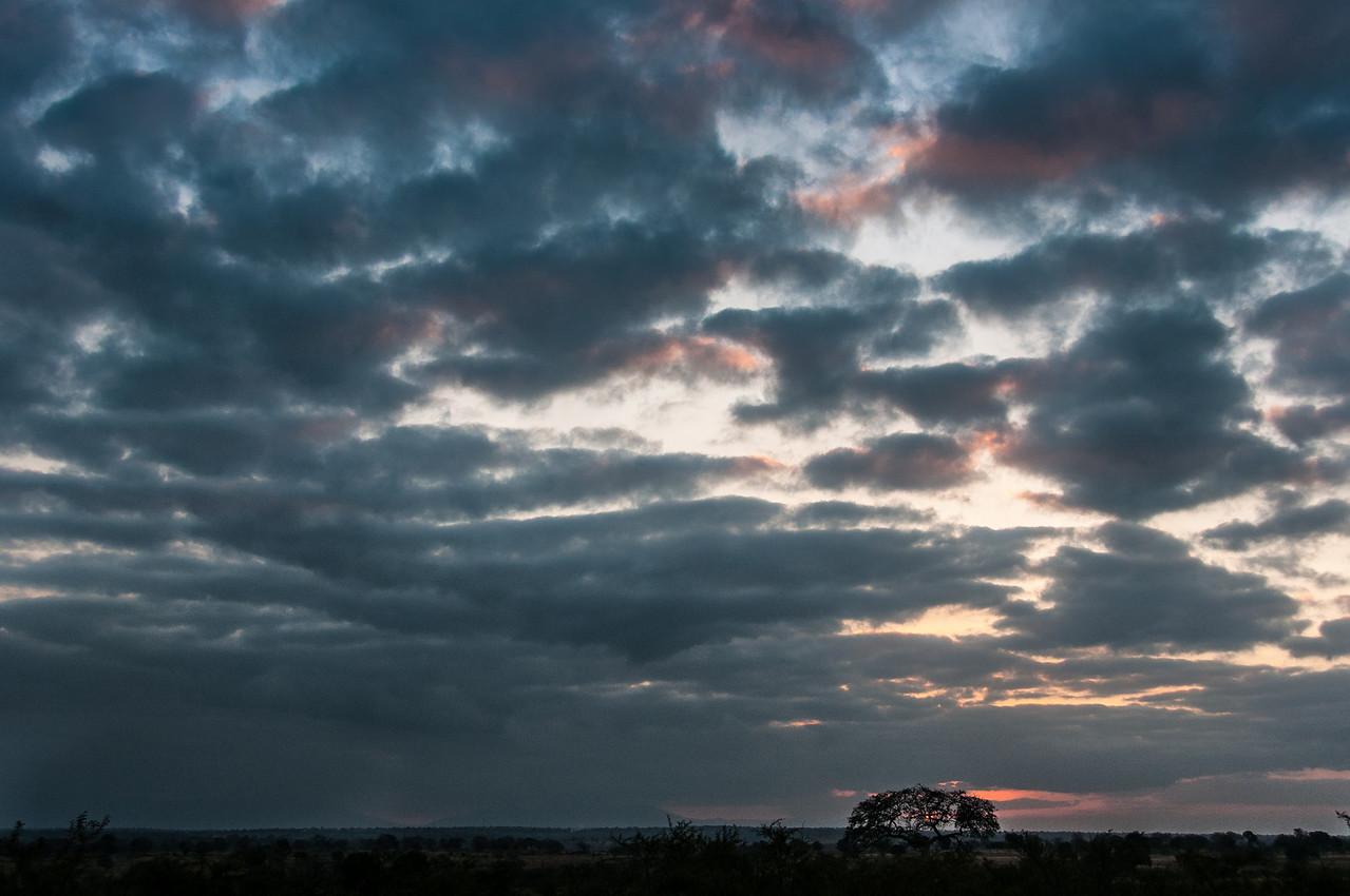 Dark clouds over Kruger National Park