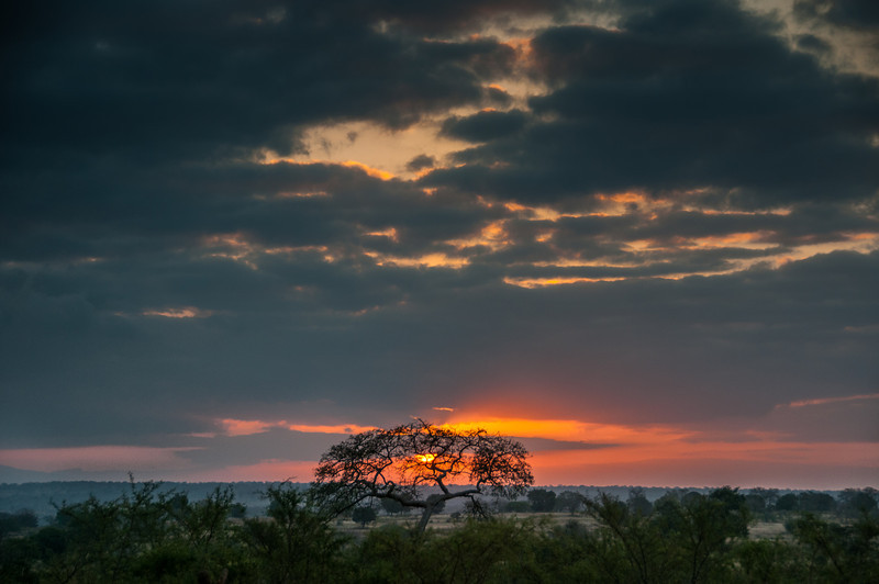 Sunset in Kruger National Park, South Africa