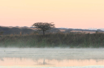 Sunrise on lake, Tala Private Game Reserve