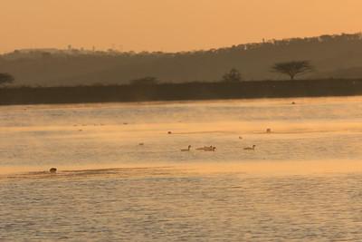 Sunrise on lake at Tala Private Game Reserve