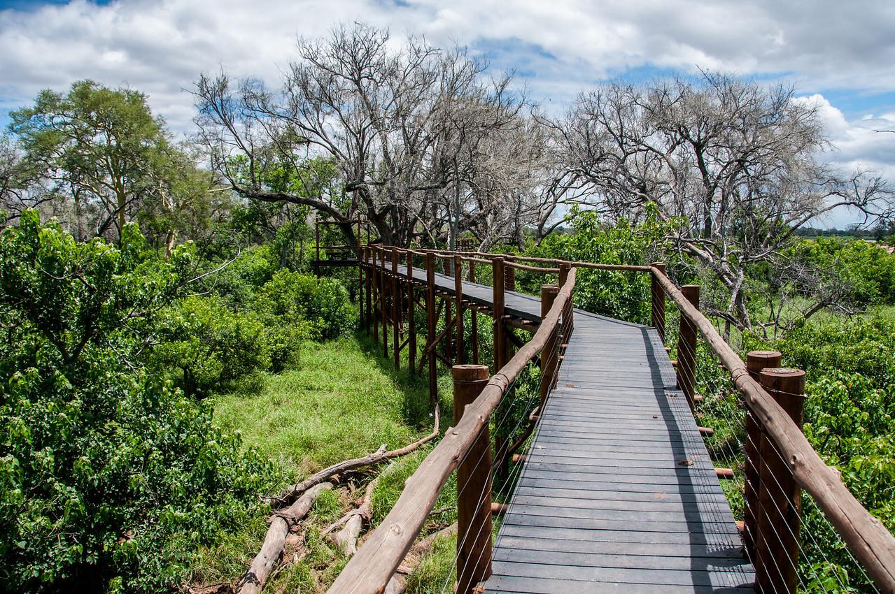 Bridge at Mapungubwe National Park, Limpopo