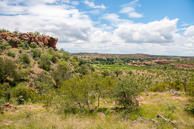 Landscape at Mapungubwe National Park, Limpopo, South Africa
