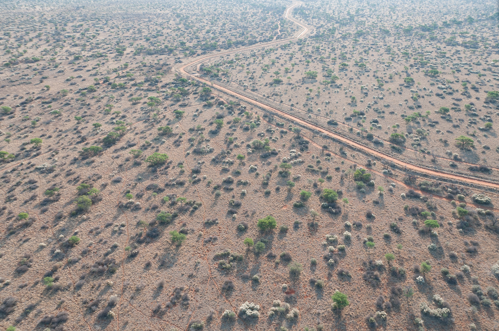 An aerial view of the South African veld