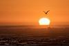 Sunset, Melkbosstrand, South Africa.  August 2017