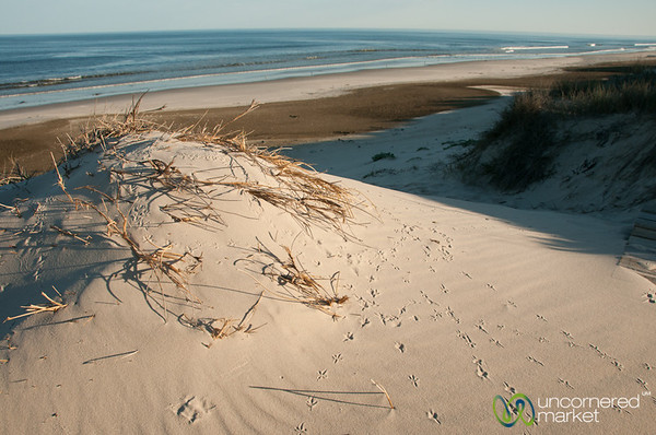 Dunes at Draaihoek Lodge - Western Cape, South Africa
