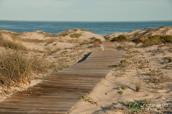 Path to the Dunes at Draaihoek Lodge - Western Cape, South Africa