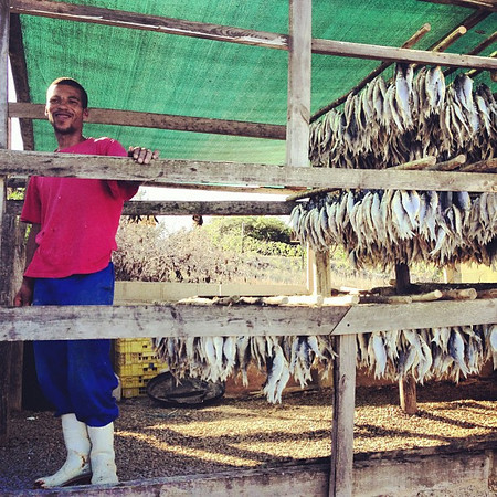 The Bokkom man of Bokkom Laan. The people you meet on the Western Cape #SouthAfrica