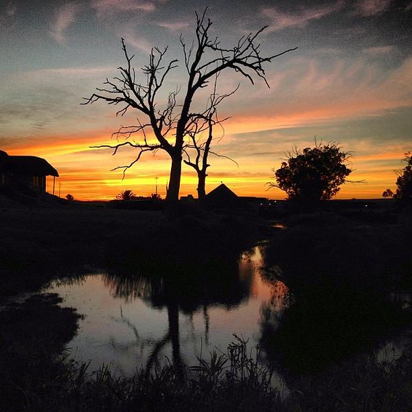 Sundown on the reserve, skies worth a long look Buffelsfontein, Western Cape #SouthAfrica