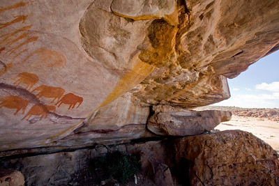 Rock paintings, Matjiesrivier Nature Reserve, Cederberg Wilderness