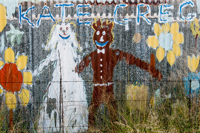 Graffiti on a fence near Vredefort Dome in South Africa