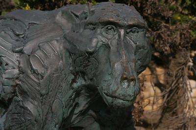 Chacma baboon statute