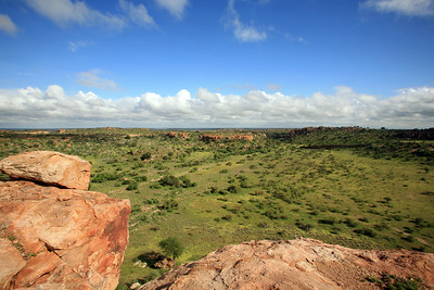 Northerly view from Mapungubwe Hill