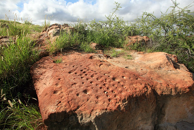 Mafuvha stone game board on Mapungubwe Hill