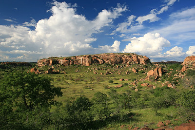 Mapungubwe Hill in springtime