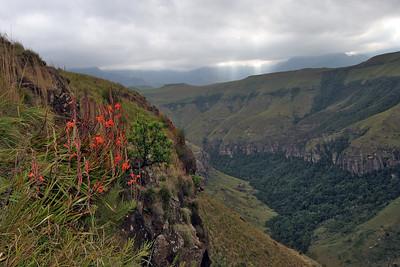 Rainbow Gorge, near Cathedral Peak