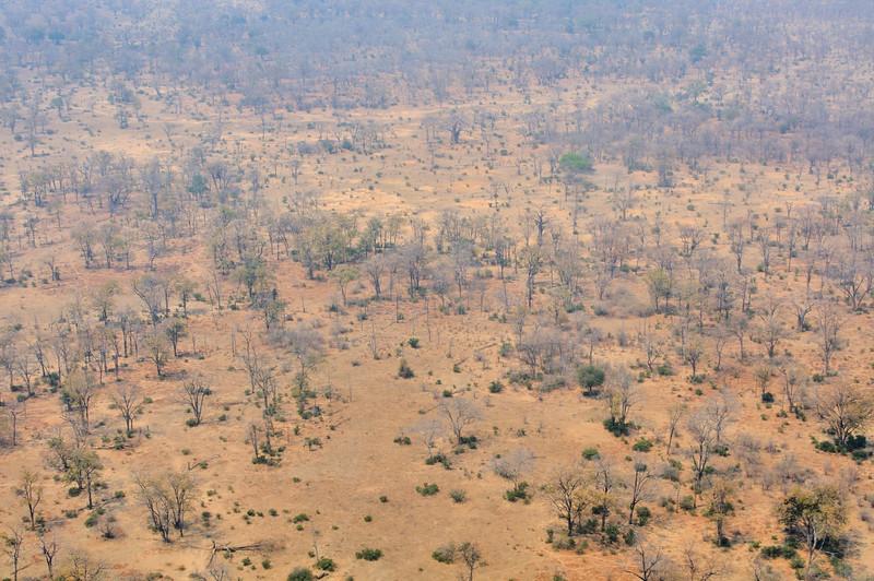 Flying over the Zimbabwe bush on the way to Ruckomechi Camp