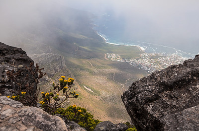 Cape Town, South Africa Camps Bay view from the top of Table Mountain.