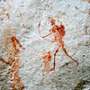 Bushmen (San) rock painting found in the Cederburg Mountains near Clanwilliam South Africa.