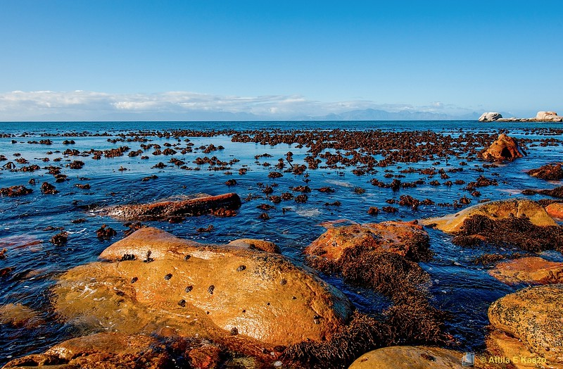 Muizenberg Beach - Seascape, Muizenberg