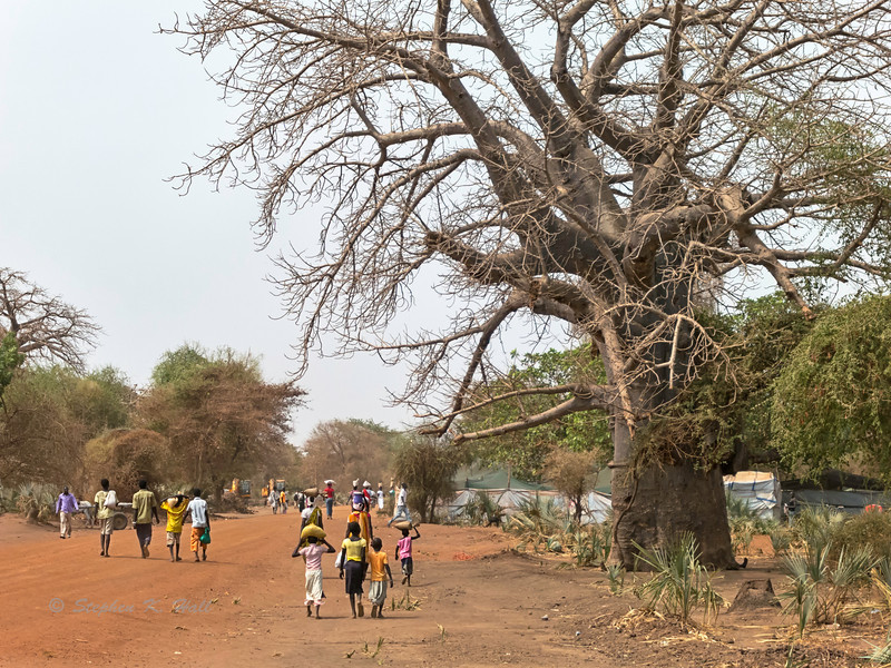 The road home. Doro, Maban County, Upper Nile State, Republic of South Sudan