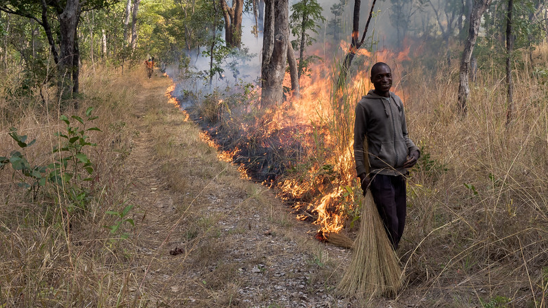 Kasanka NP controlled burning