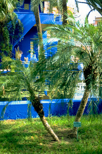 Jardin Majorelle – founded in 1923 by french painter Jacques Majorelle.