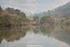 Hippopotamus, Mlilwane Wildlife Sanctuary, Swaziland.