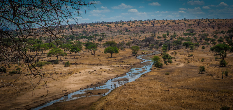 Tarangari_Tanzania_2006_0094