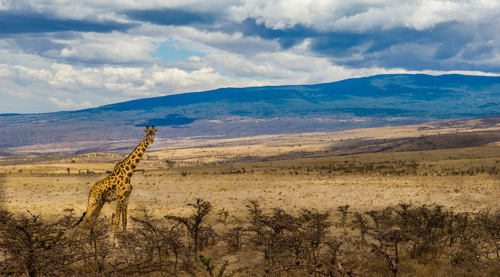 Olduvai_Gorge_Tanzania_2006_060