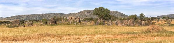 Long rows of rocks in the Muro Kopje region