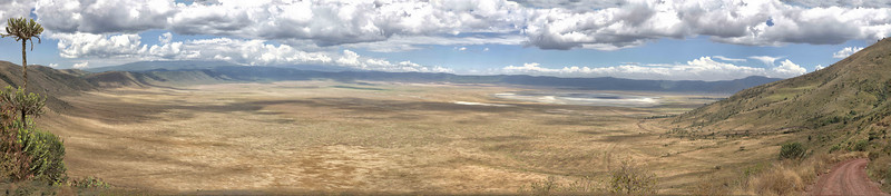 A wide view of Ngorongoro crater from the rim