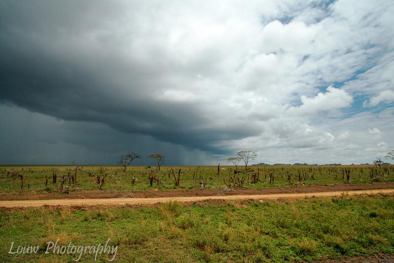 "Approaching rainstorm, <a target=""NEWWIN"" href=""http://en.wikipedia.org/wiki/Serengeti"">Serengeti</a>, Tanzania"