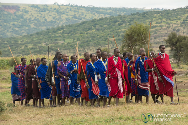 Maasai Warriors Arrive at the Party - Northern Tanzania